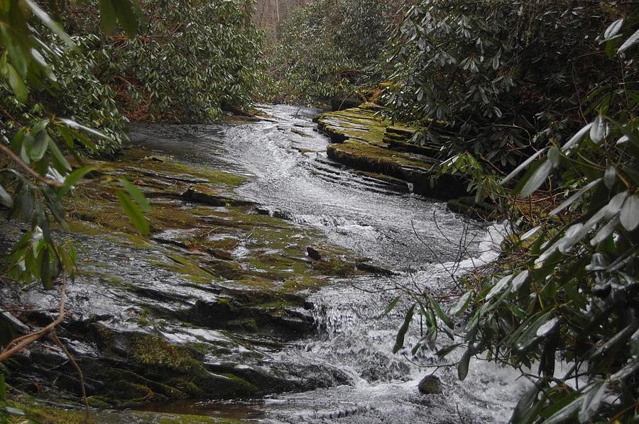 Water Photograph - Sideways Creek by Joyce Brooks
