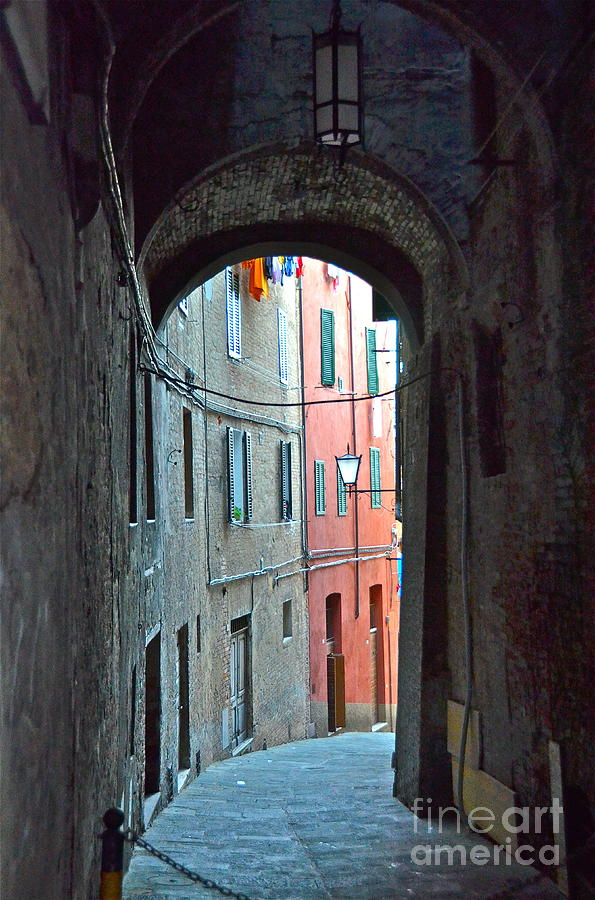 Arch Photograph - Siena Italy by Amy Fearn