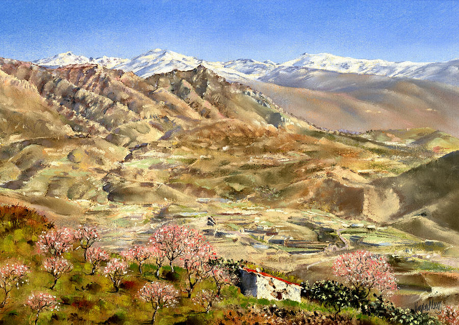 Pastel Painting - Sierra Nevada With Almond Blossom by Margaret Merry