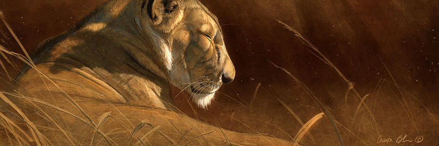 Lion Digital Art - Siesta by Aaron Blaise