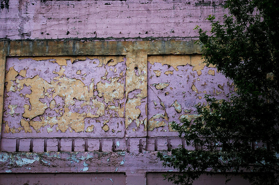 Paint Photograph - Signs Gone By by Christine Burdine