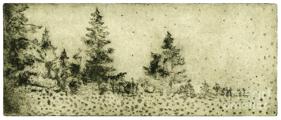 Silence Painting - Silence - The North - Landscape - Trees  - Forest - Dots - Fall - Fine Art Print - Stock Image by Helga Pohlen \ Urft Valley Art