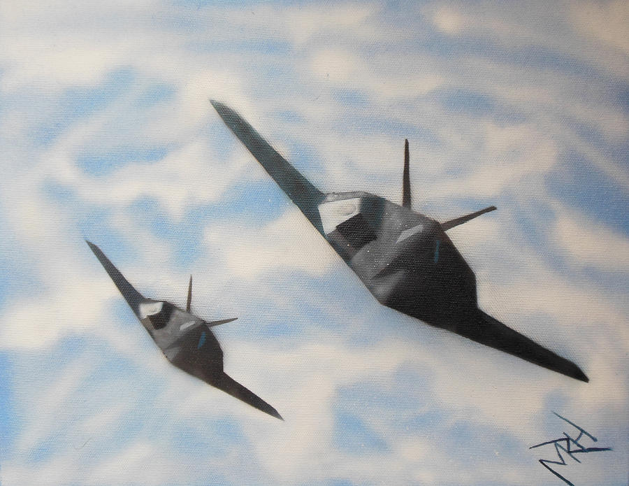 Aircraft Painting - Silent But Deadly by Michael Hall