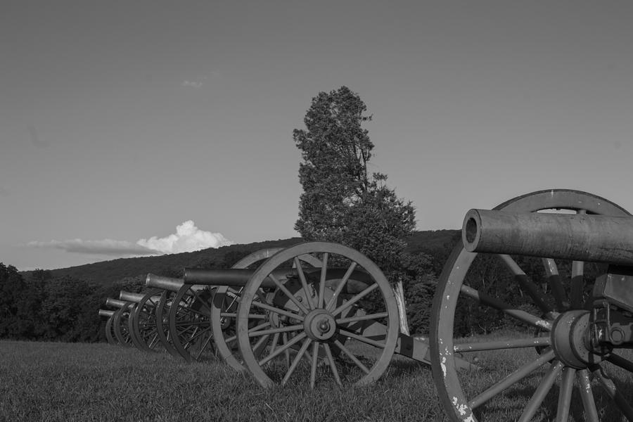 Cannon Photograph - Silent Cannons by Michael Williams