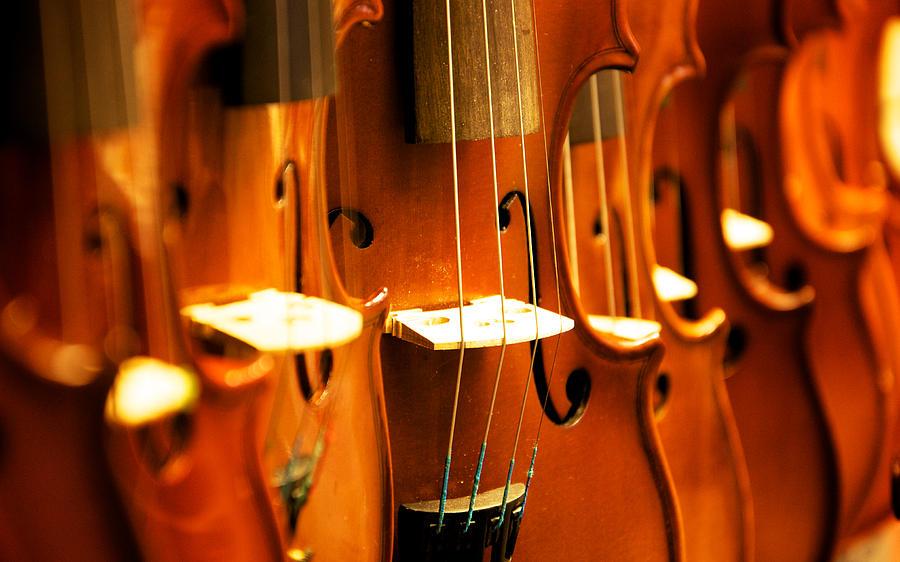Violin Photograph - Silent violins by Maurizio Incurvati