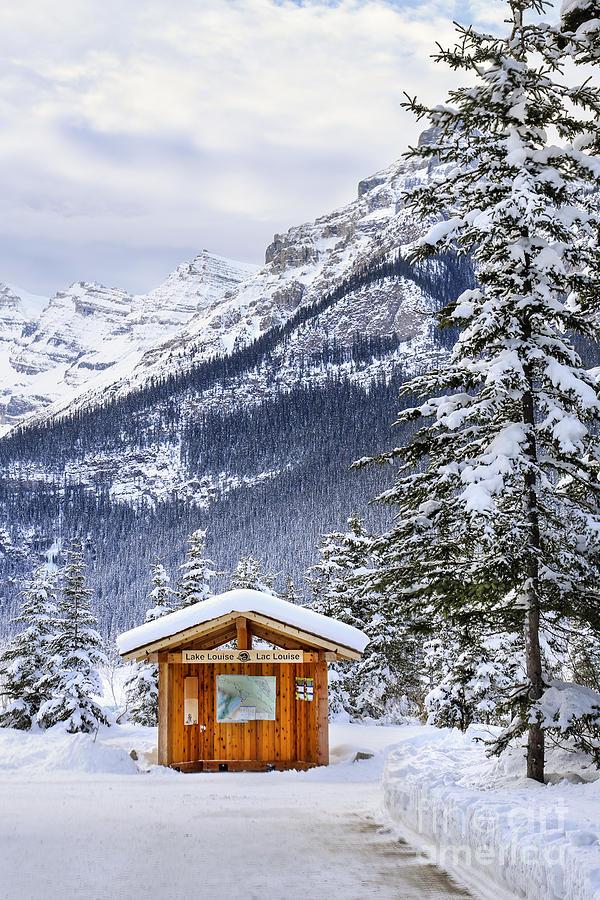Silent Winter Photograph
