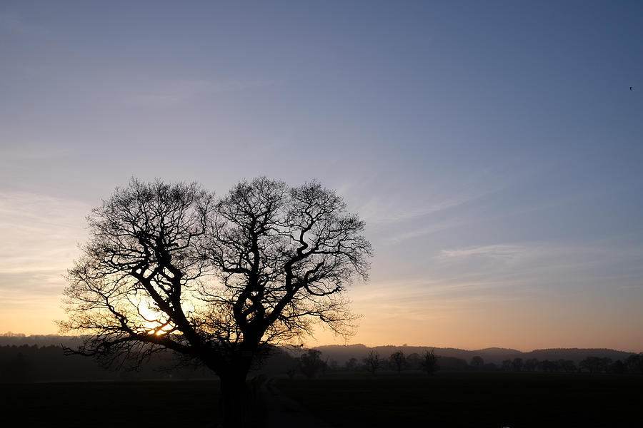 Sunset Photograph - Silhouette by Mark Severn