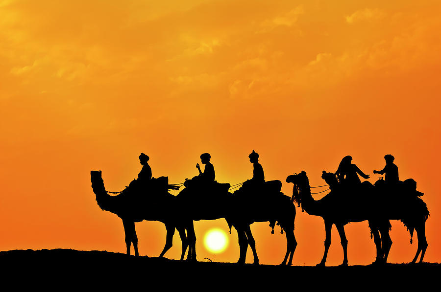 Silhouette Of Camel Caravan In The Photograph by Alpamayophoto