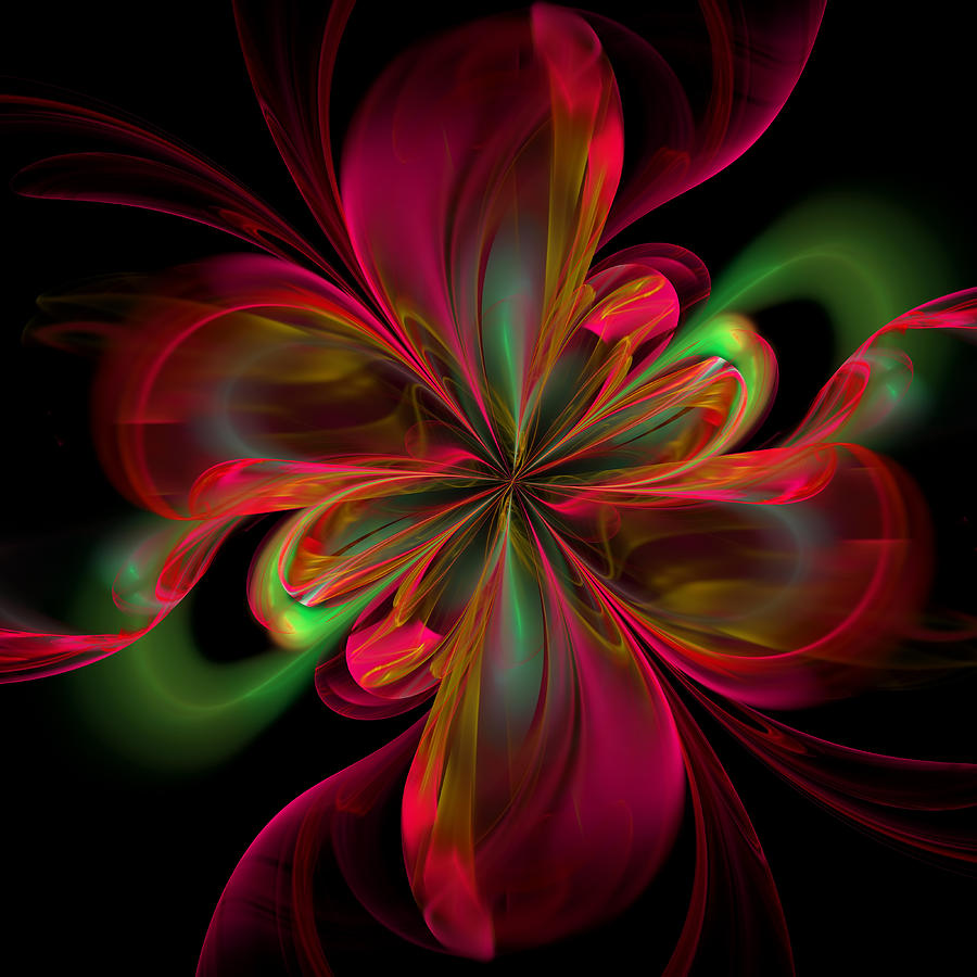 Silk Butterfly Abstract Digital Art by Georgiana Romanovna