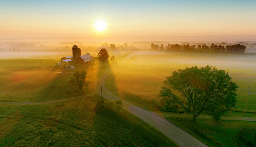 Silos and trees cast long shadows in fog at sunrise. Photograph by JamesBrey