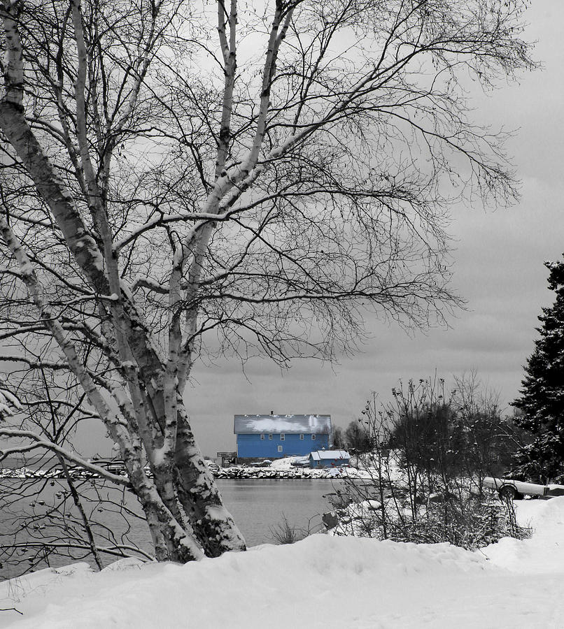 Silver Islet Photograph - Silver Islet Store by Linda Ryma