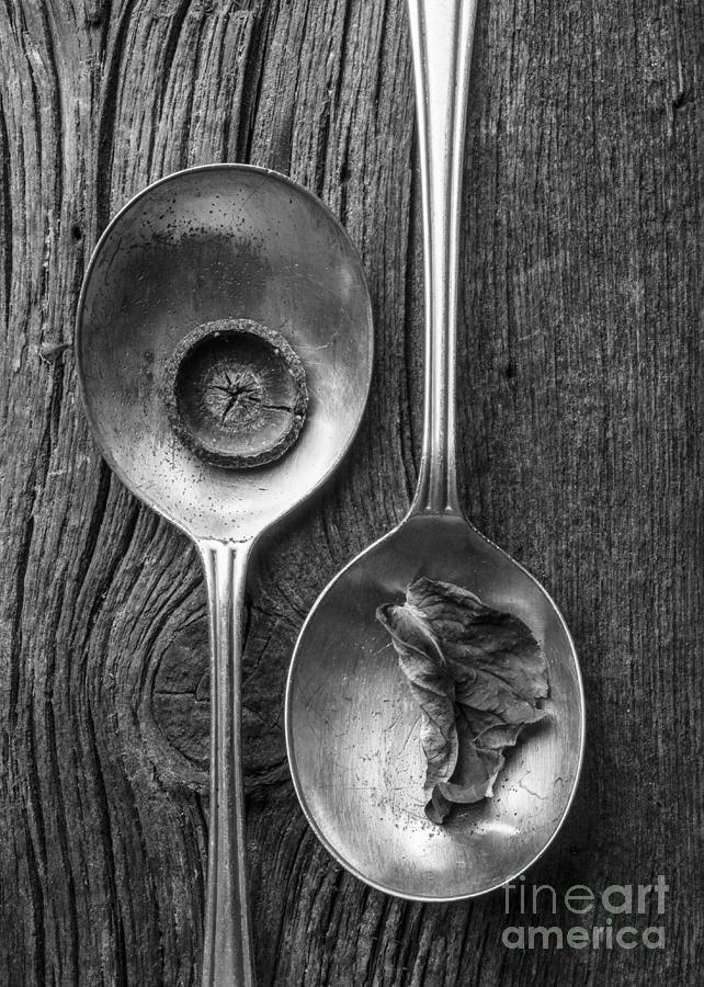 Studio Photograph - Silver Spoons Black And White by Edward Fielding