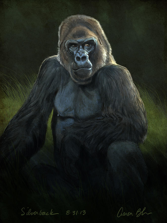 Digital Digital Art - Silverback by Aaron Blaise