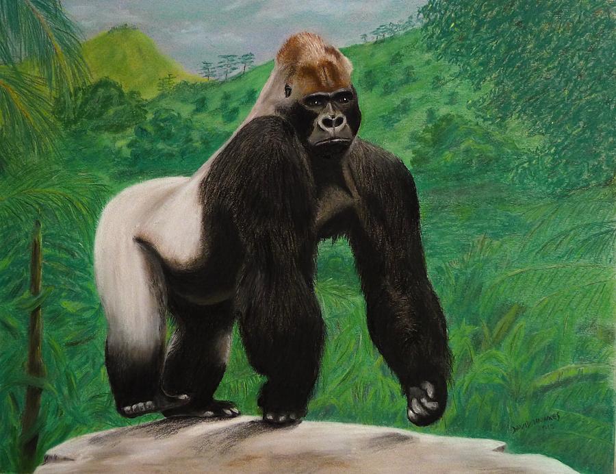Gorilla Painting - Silverback Gorilla by David Hawkes