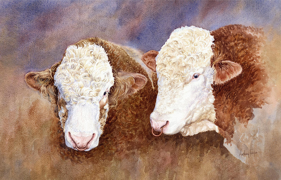 Cattle Painting - Simmental Bulls by Anthony Forster