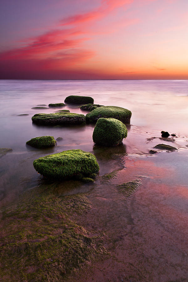 Seascape Photograph - Simphony Of Color by Jorge Maia