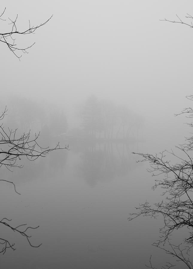 Foggy Photograph - Simple Pleasures by Luke Moore