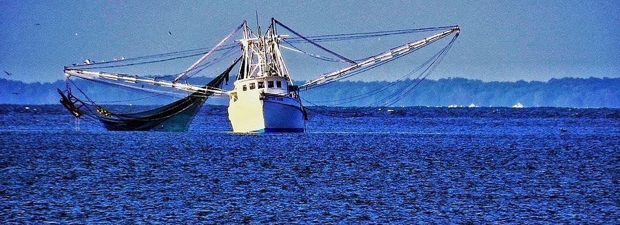 Shrimp Boat Photograph - Simple Shrimpboat by Patricia Greer