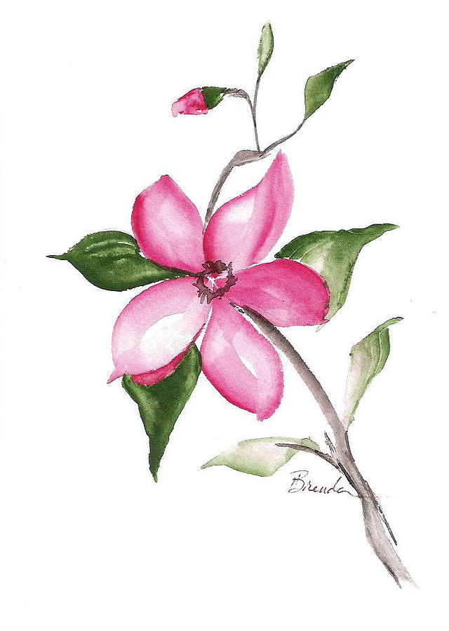 Watercolor Painting Painting - Simplicity by Brenda Ruark
