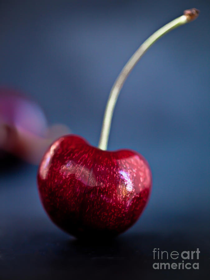 Simply Cherry by Patricia Bainter