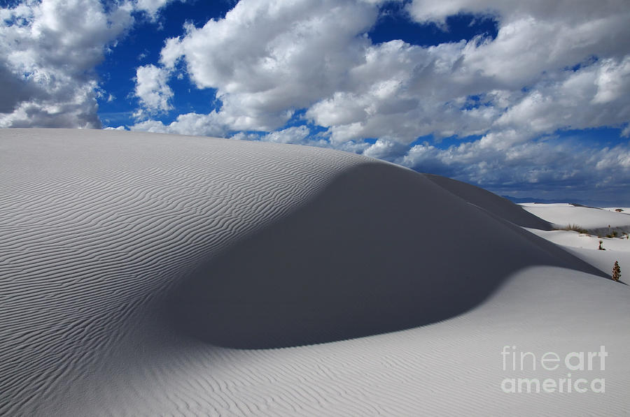 White Sands Photograph - Simply Enchanted by Vivian Christopher