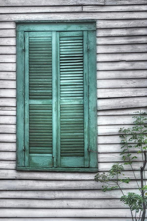 Window Photograph - Simply Green by Brenda Bryant