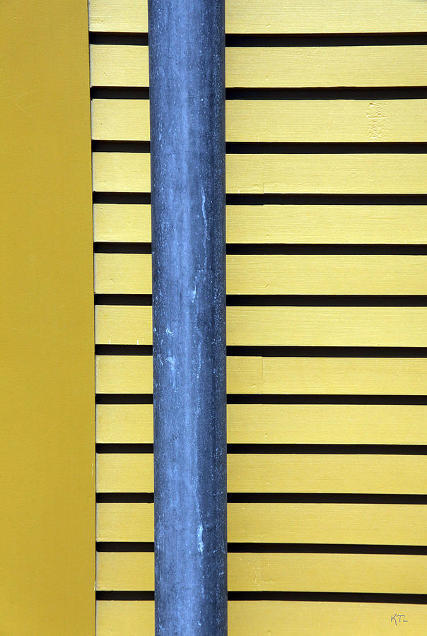 Lines Photograph - Simply Straight by Karol Livote