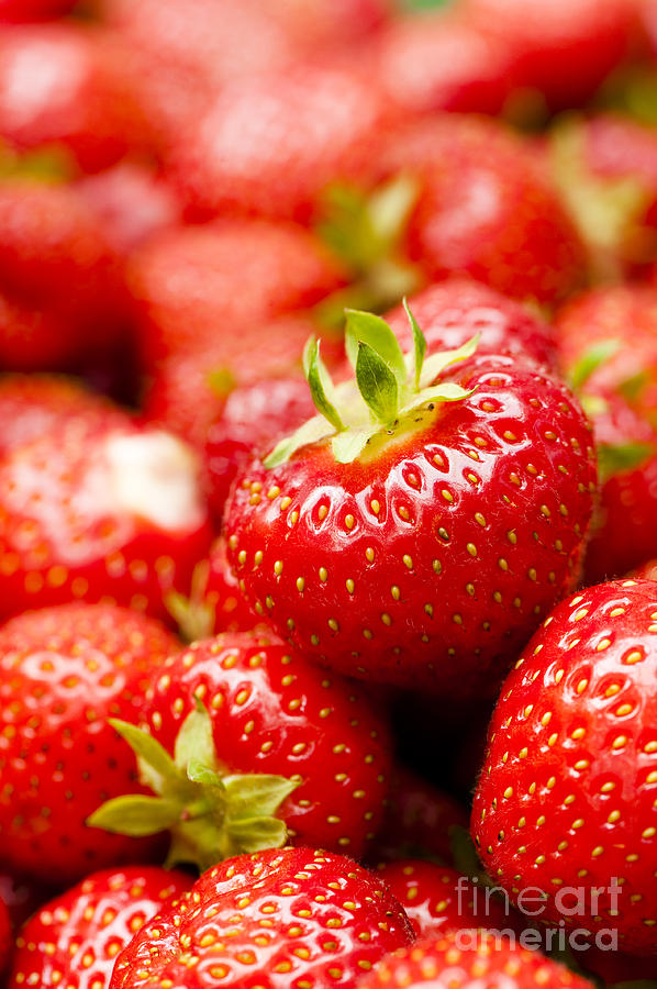 Background Photograph - Simply Strawberries by Anne Gilbert