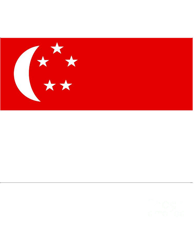 Singapore Digital Art - Singapore Flag by Frederick Holiday