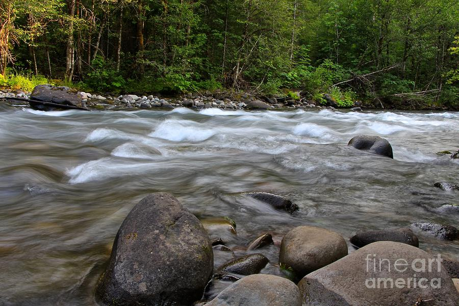 Singing Creek Photograph by Tim Rice