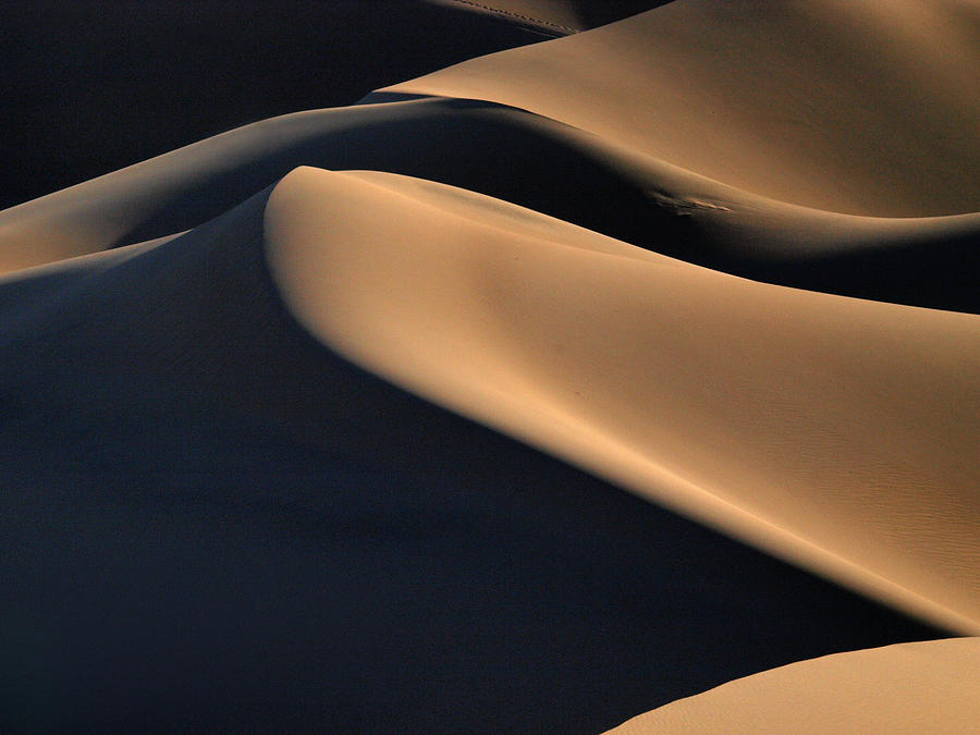 Death Valley Photograph - Sinuous Dunes  by Joe Schofield