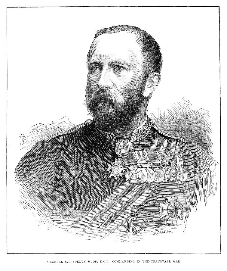 1881 Painting - Sir Evelyn Wood by Granger