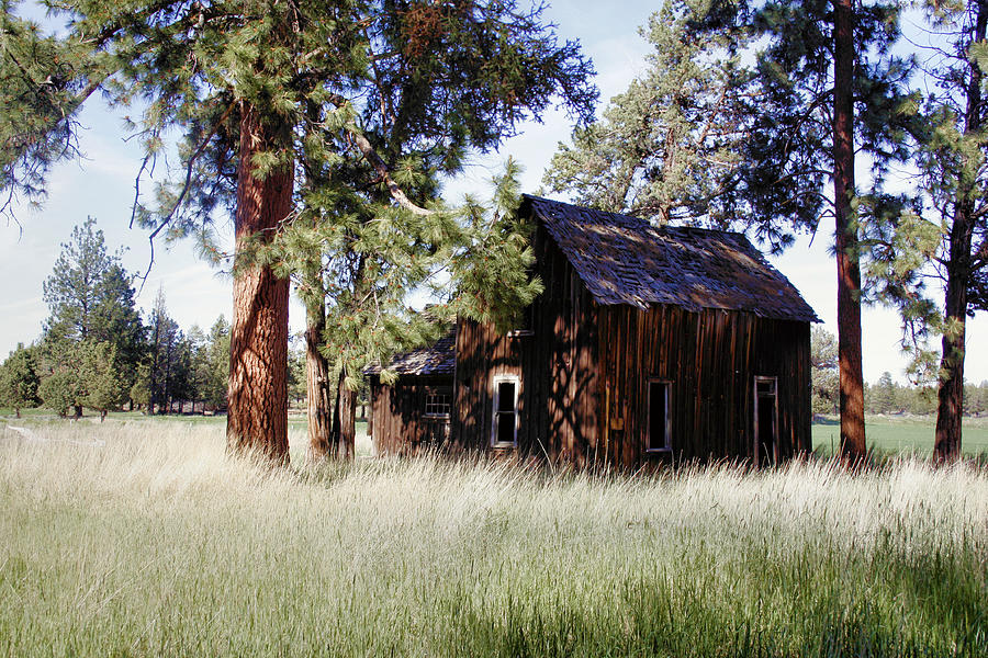 Deschutes County Photograph - Sisters Homestead by Ray Finch