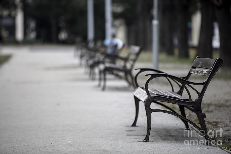 Budapest Photograph - Sitting Alone by Mohamed Rahmo