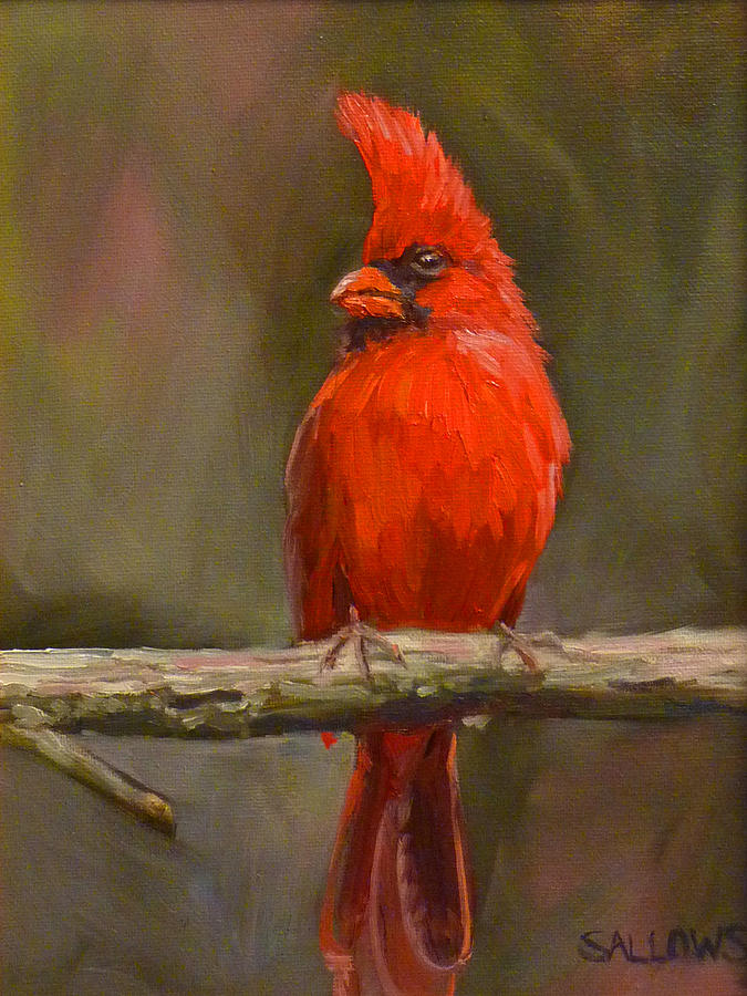 Cardinal Painting - Sitting Pretty by Nora Sallows
