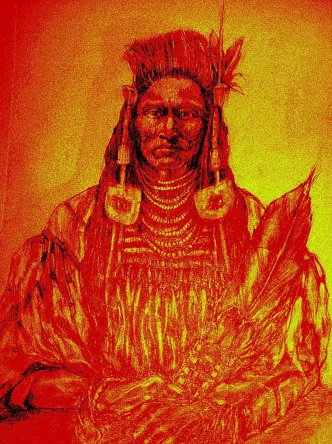 Native American Theme Artwork Drawing - Sitting Proud by Johanna Elik