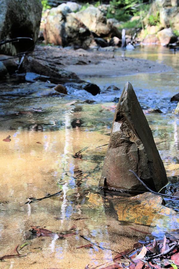 Stream Photograph - Six Mile Creek by David Rich
