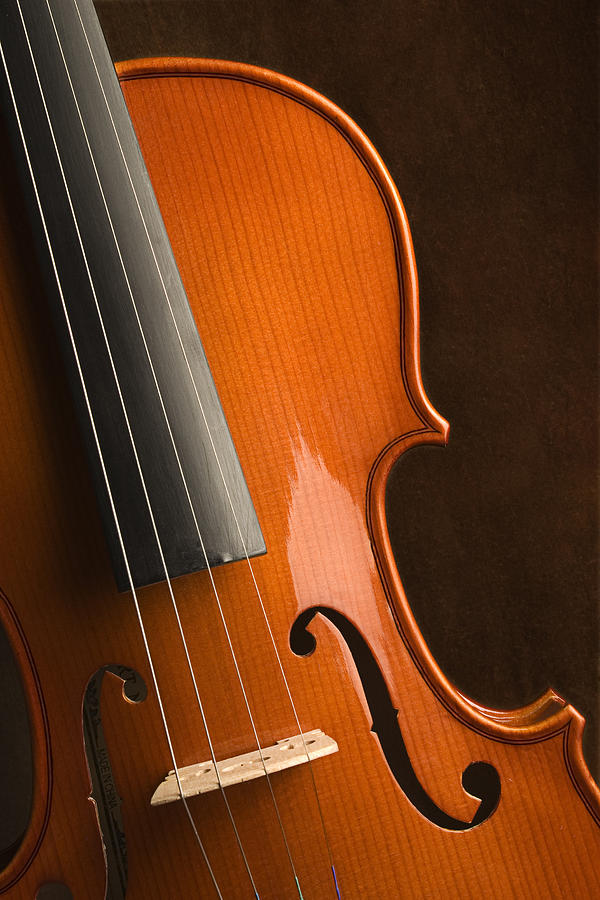 Skc 0950 Music Of Violin Photograph