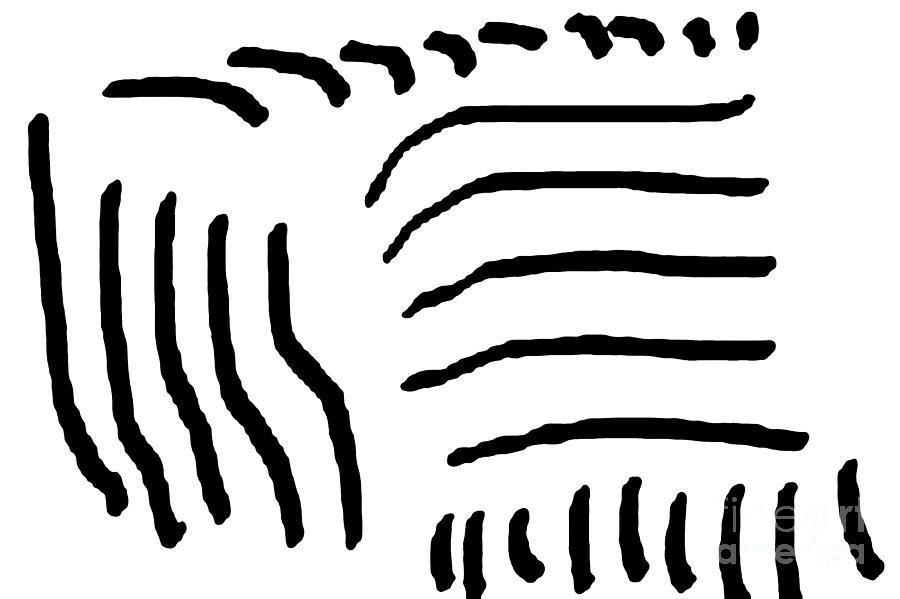 Sketch Digital Art - Sketch 4 by Meenal C