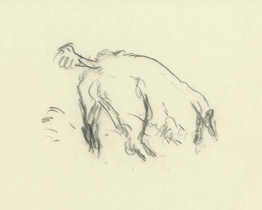 Sketch Of A Dog Digging A Hole Digital Art by Carl Oscar August Erickson