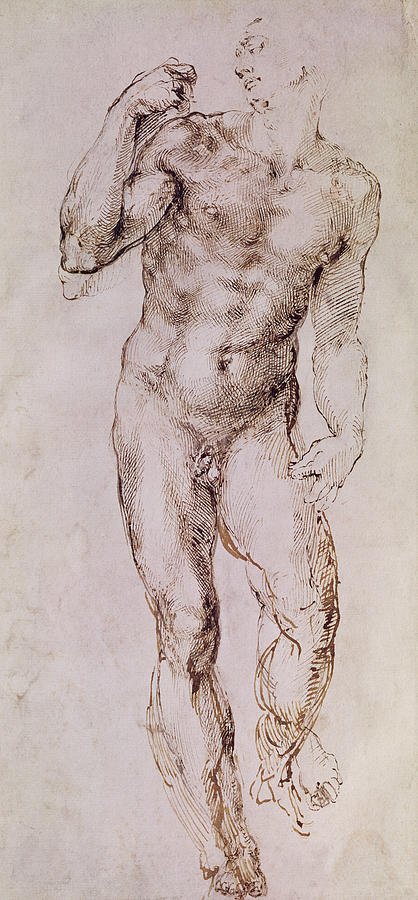 Nude Painting - Sketch Of David With His Sling by Michelangelo Buonarroti