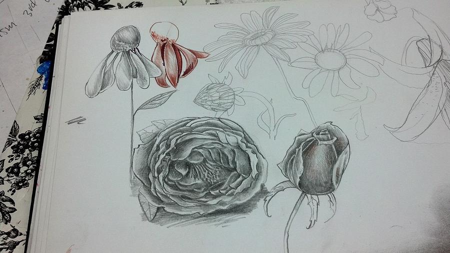 Drawing Drawing - Sketchbook  by Dan Olszewski