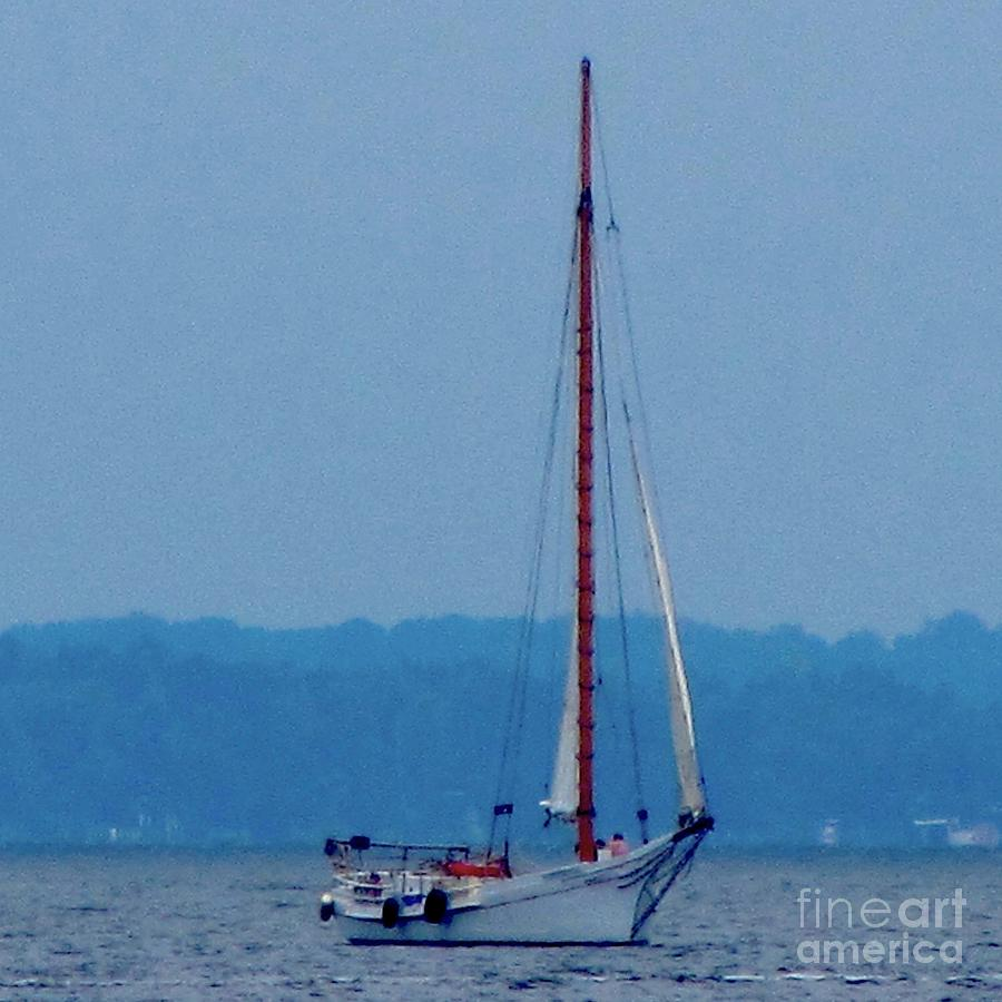 Skipjack Photograph - Skipjack Mast Lowering On The Bay by Debbie Nester