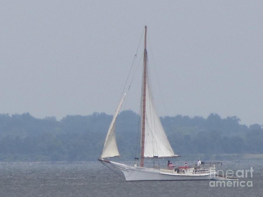 Skipjack Photograph - Skipjack On The Bay  by Debbie Nester
