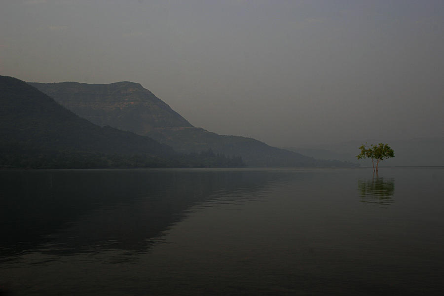 One Photograph - Skc 0086 Solitary Isolation by Sunil Kapadia
