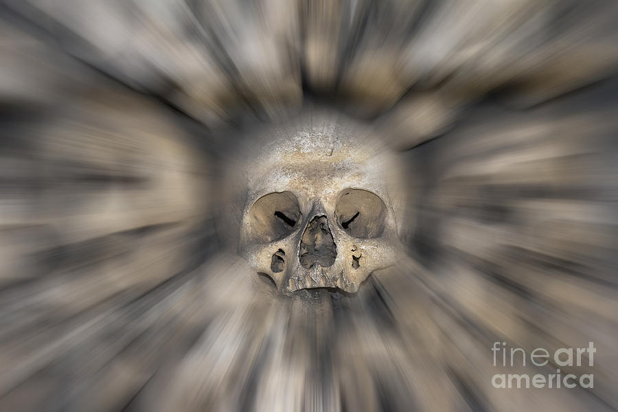 Halloween Photograph - Skull - Fear And Trembling  by Michal Boubin