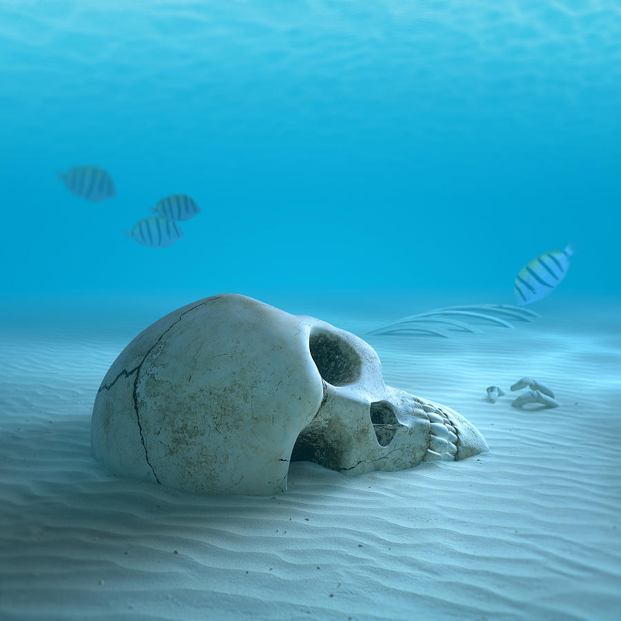 Skull Photograph - Skull On Sandy Ocean Bottom by Johan Swanepoel