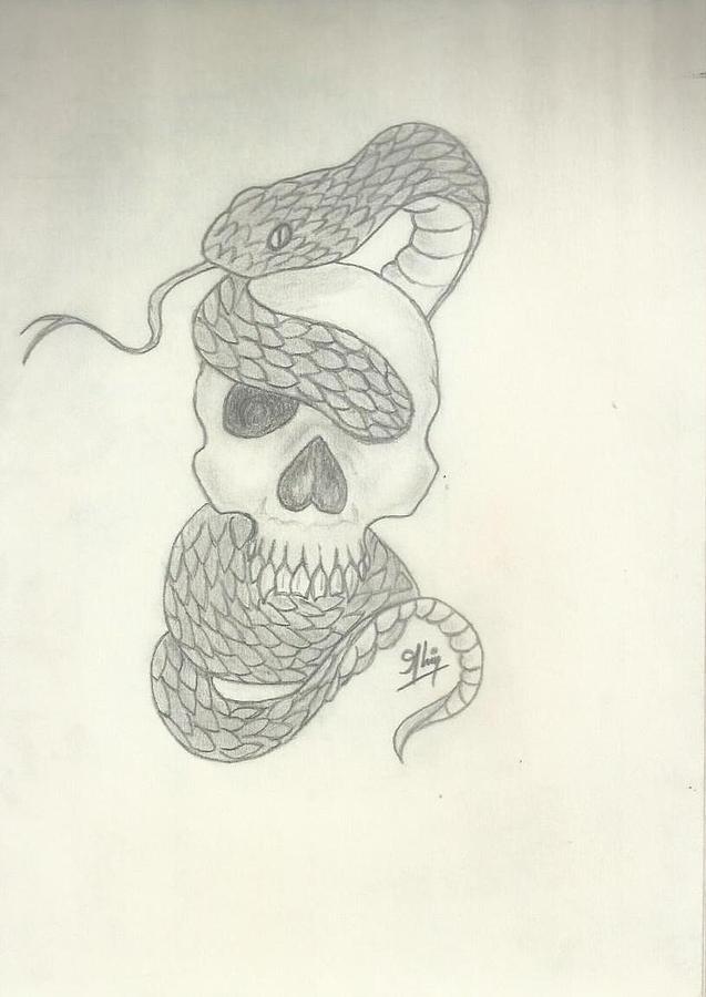 Skull Drawing - Skull Sketch by Saleem Baig
