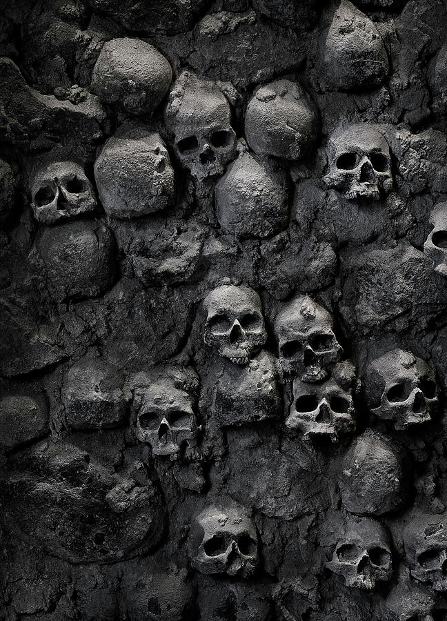 Skulls Photograph by Bruno Ehrs