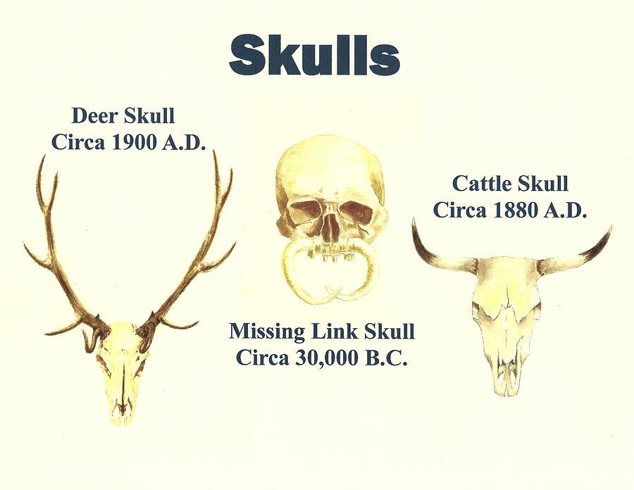 Skull Painting - Skulls by Michael Vigliotti